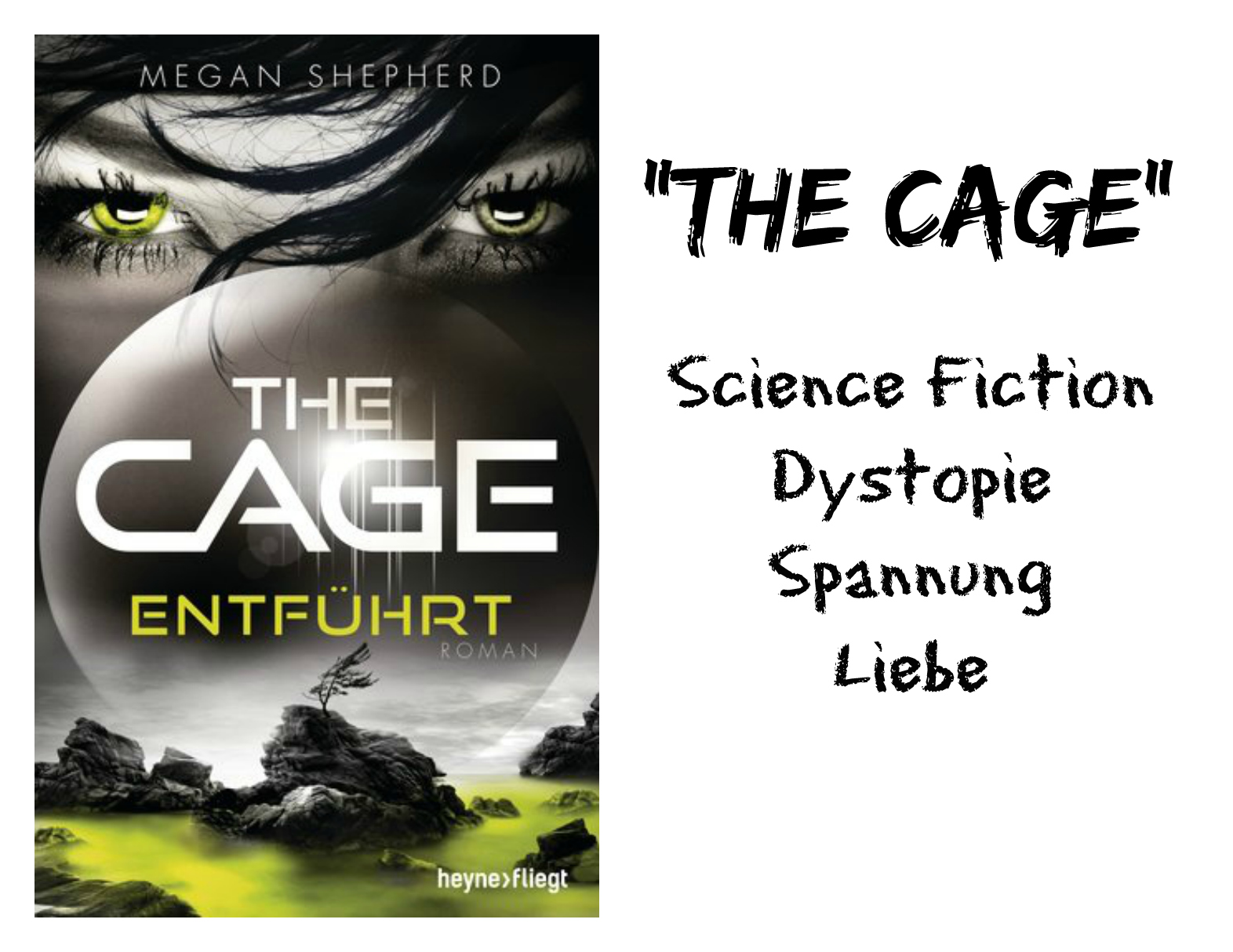 thecage4